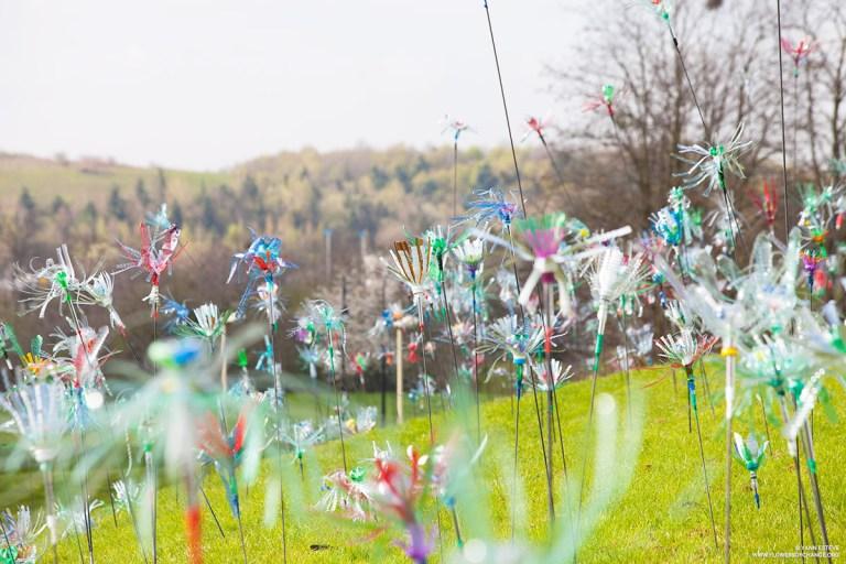 Flowers of change